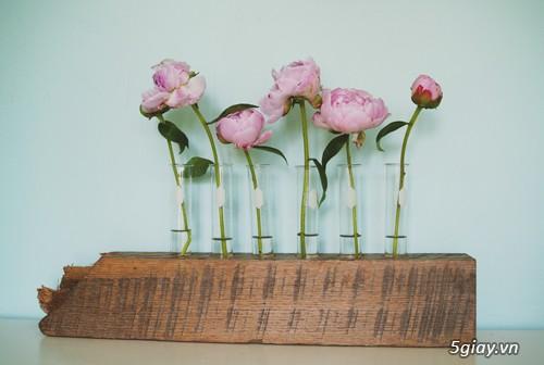 Lọ hoa cá tính từ gỗ và ống nghiệm - 207979