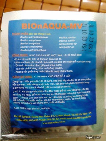 Hộp vi sinh bio hàng hand made siêu hiệu quả cho bể cá cảnh 65k - 1