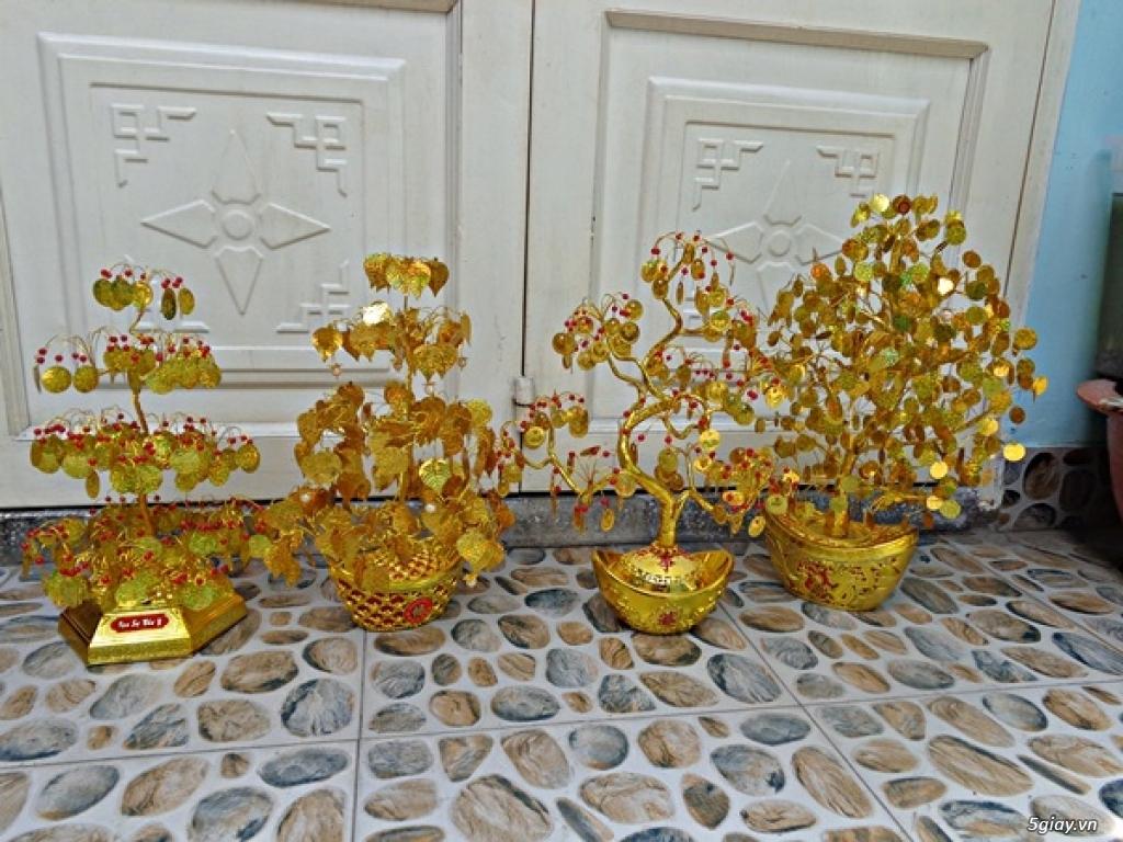 Cây lá vàng tài lộc