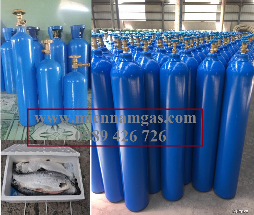 Bán bình Oxy cá, cung cấp bình Oxy cá - 1