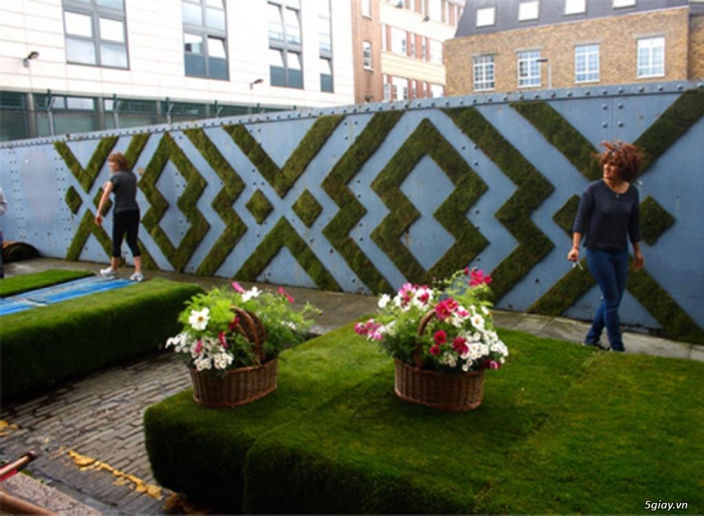 Làm tường rêu cổ kính đơn giản