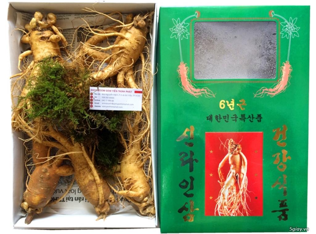 Siêu thị sâm Hàn Quốc. Quà tặng sức khỏe - 9