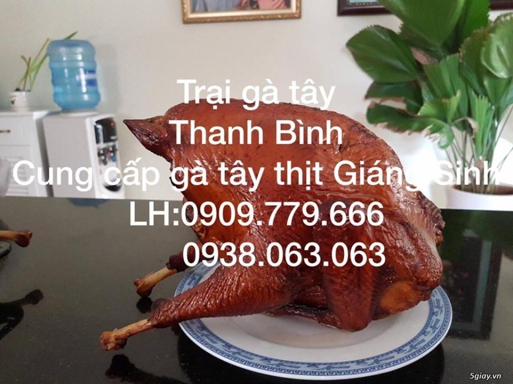 Trại gà tây Thanh Bình.Cung cấp gà tây thịt Giáng Sinh 2017 - 11