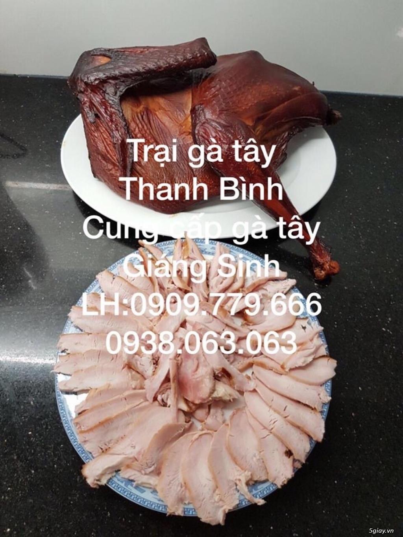 Trại gà tây Thanh Bình.Cung cấp gà tây thịt Giáng Sinh 2017 - 13
