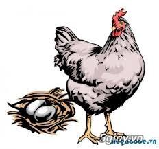 Thanh lí gà tre ,gà nòi giá cản mái ngã 4 hàng xanh