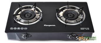 Nồi cơm điện tử Aqua, lò vi sóng Sanyo, bếp ga Kangaroo BH 1năm giá rẻ - 2
