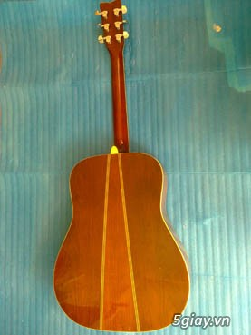 Guitar Morris W 60 và Guitar Yamaha FG 401Nhật - 17