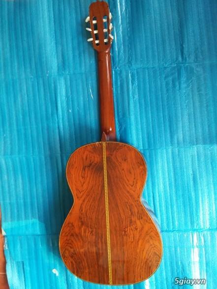 Guitar Jacaranda Matsouka M 60, No 20, Morris MC 50 và Kurosawa No 6 - 20