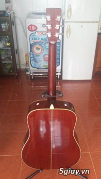 Guitar Morris W 60 và Guitar Yamaha FG 401Nhật - 8