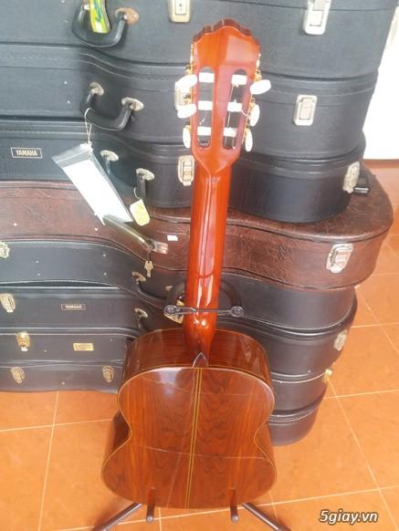 Guitar Jacaranda Matsouka M 60, No 20, Morris MC 50 và Kurosawa No 6 - 15