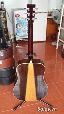 Guitar Morris W 60 và Guitar Yamaha FG 401Nhật - 2