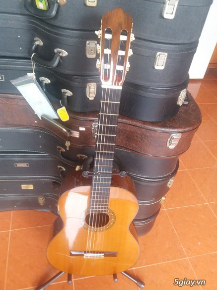 Guitar Jacaranda Matsouka M 60, No 20, Morris MC 50 và Kurosawa No 6 - 10