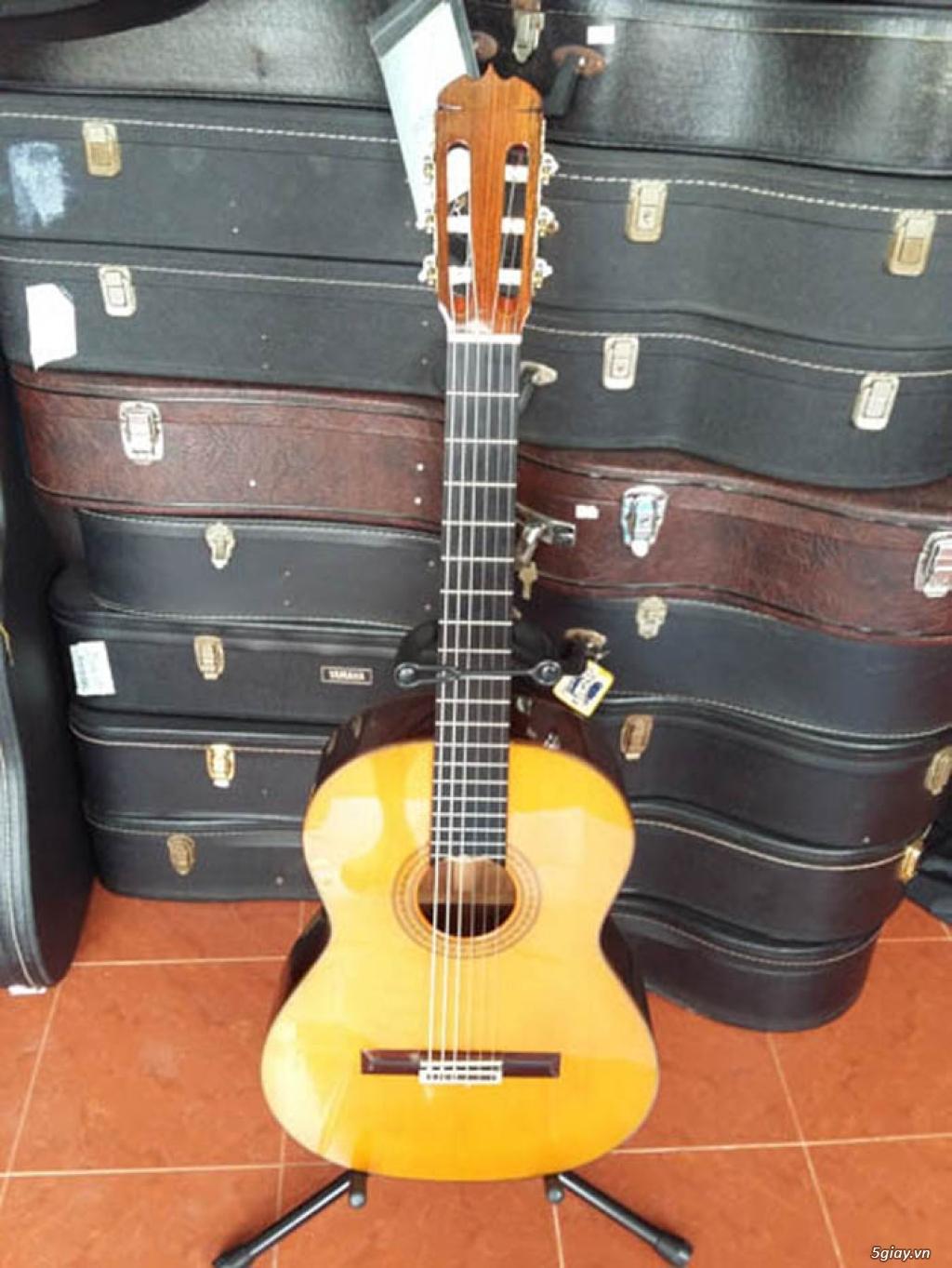Guitar Jacaranda Matsouka M 60, No 20, Morris MC 50 và Kurosawa No 6