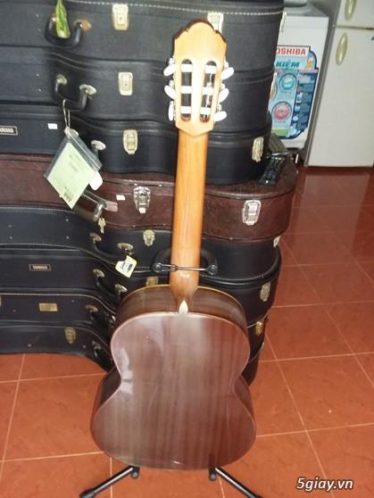 Alhambra guitar Mod 4C, Alhambra 1P và Alhambra Iberia A Tây Ban Nha - 5