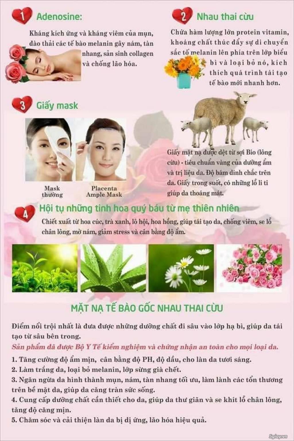 Mặt nạ nhau thai cừu Placenta Ample Mask- Mat na nhau thai cuu - 5