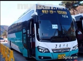 TT 850TR-Giao ngay-Xe khách cao cấp Daewoo BH 116SF, 47chỗ- ĐKĐK ngay - 2