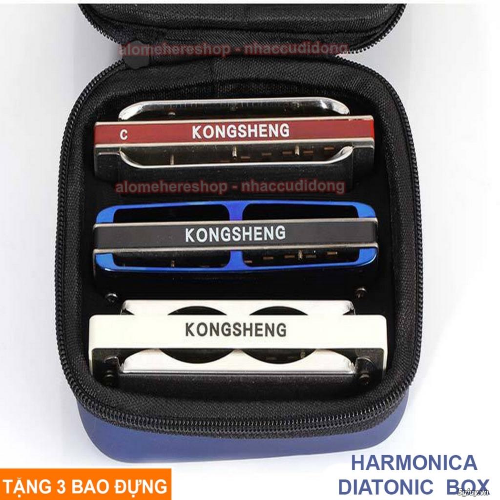 Nhaccudidong.com -Chuyên các loại harmonica, kèn, sáo, nhạc cụ nhỏ gọn - 15