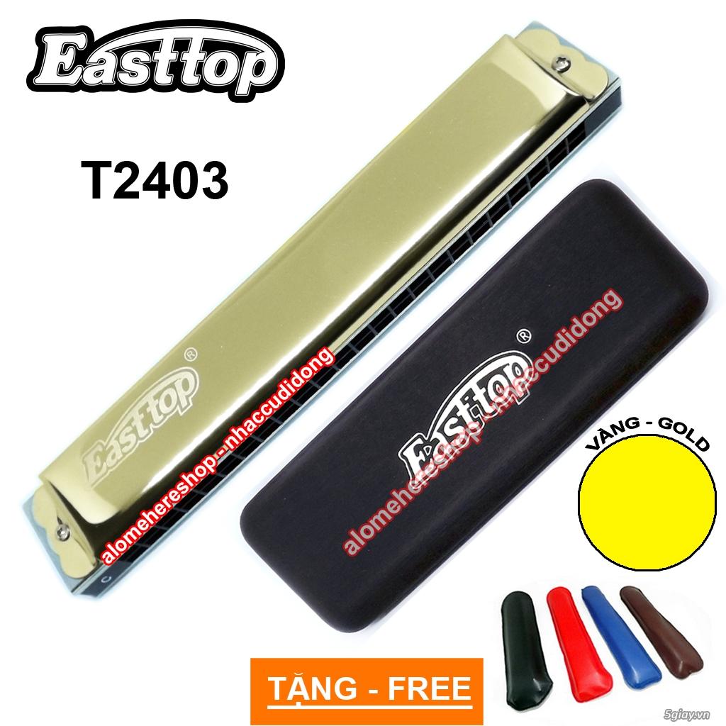 Nhaccudidong.com -Chuyên các loại harmonica, kèn, sáo, nhạc cụ nhỏ gọn - 6