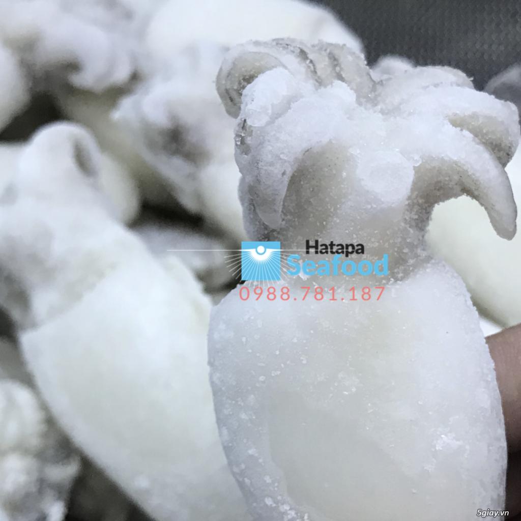 Hải sản đông lạnh chất lượng giá rẻ nhất, bạch tuộc, mực lá, mực nút, mực sữa, mực fillet mực nang. - 16