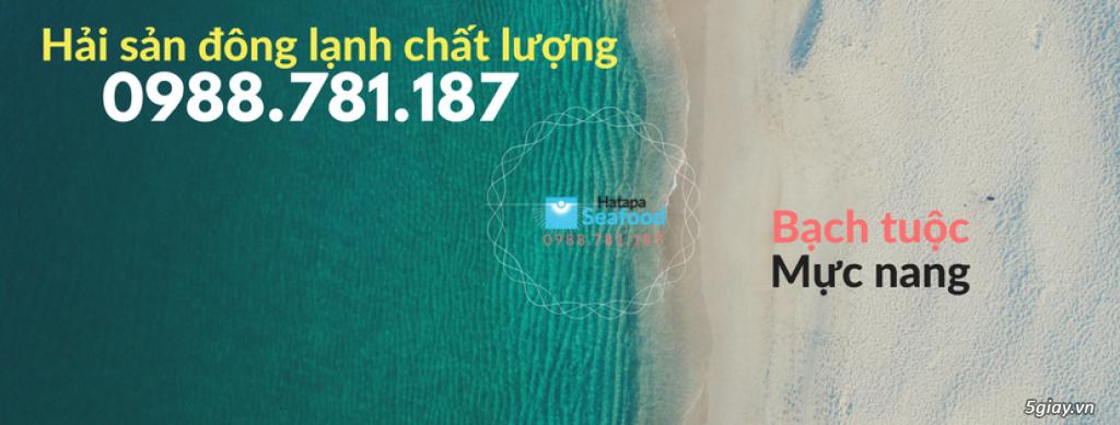 Cung cấp hải sản giá rẻ nhất Việt Nam, hải sản tươi & khô, đông lạnh nguyên chất từ vựa hải sản.