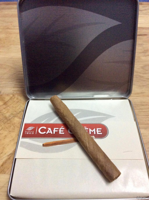 Xì gà mini 115k/hộp 10 điếu vị cafe thơm miệng thích hợp làm quà tặng - 10