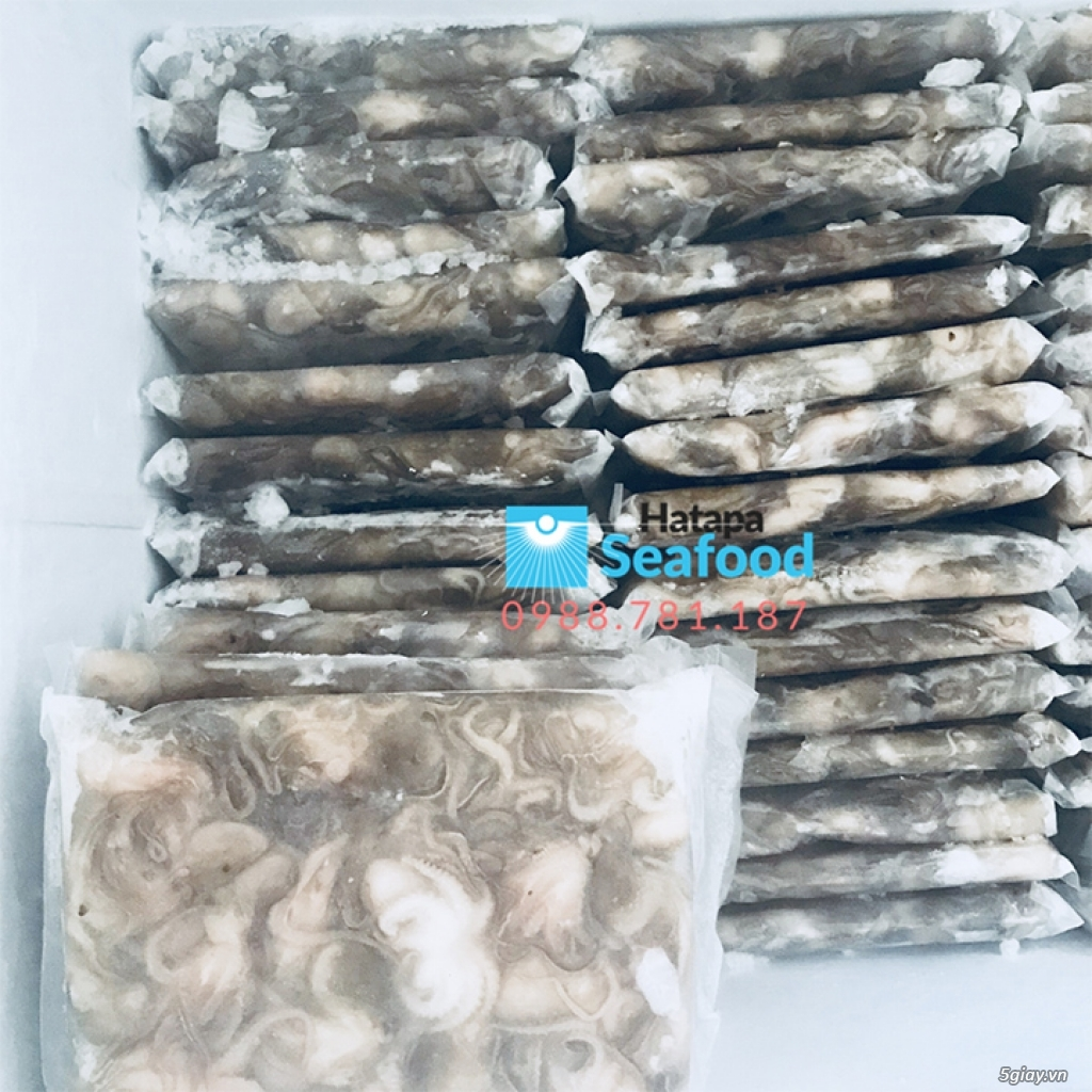 Bạch tuộc đông lạnh giá tận gốc, hải sản bạch tuộc chất lượng giá rẻ - 8