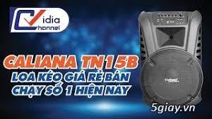 Loa kéo Thương hiệu VIỆT, Caliana TN15 MỚI 100% BASS 4 TẤC - 3