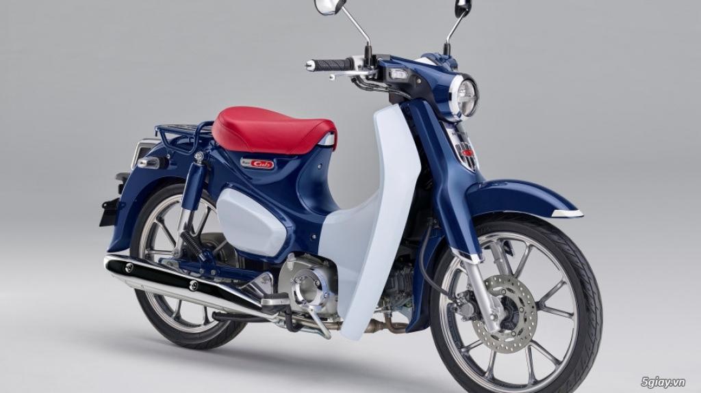 Honda Super Cub và Monkey 125 trở lại Mỹ