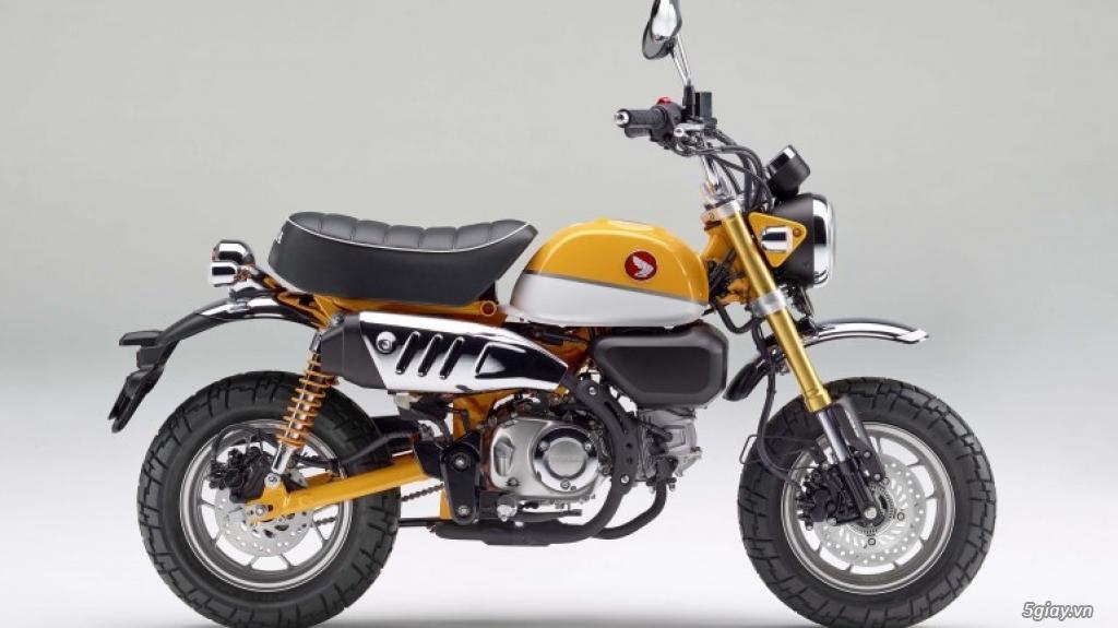Honda Super Cub và Monkey 125 trở lại Mỹ - 2
