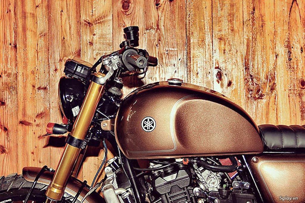 Yamaha R25 lột xác thành scrambler - 3