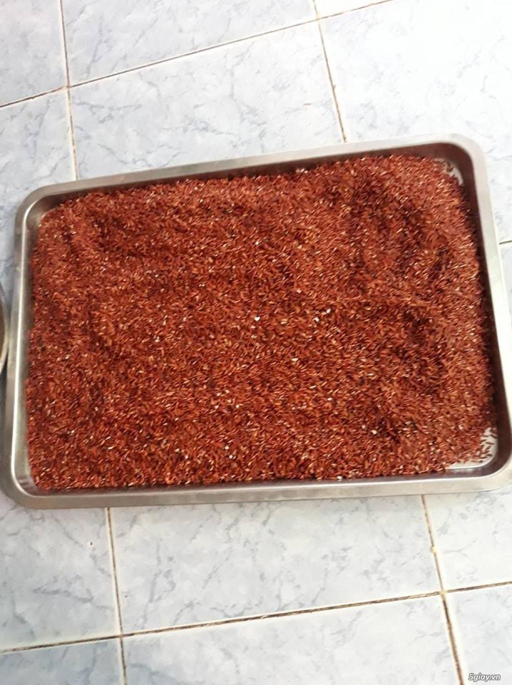 Bán bột gạo lứt huyết rồng trộn cùng 5 loại đậu khác nhau - 2