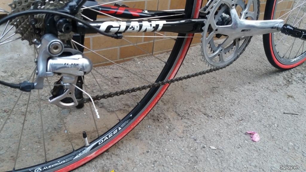 Xe đạp  ROAD cao cấp PROGRESSIVE - 11
