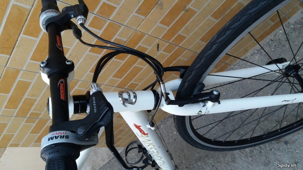 Xe đạp  ROAD cao cấp PROGRESSIVE - 13