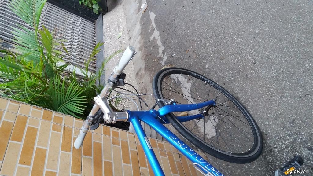 Xe đạp phong cách JAPAN - 5