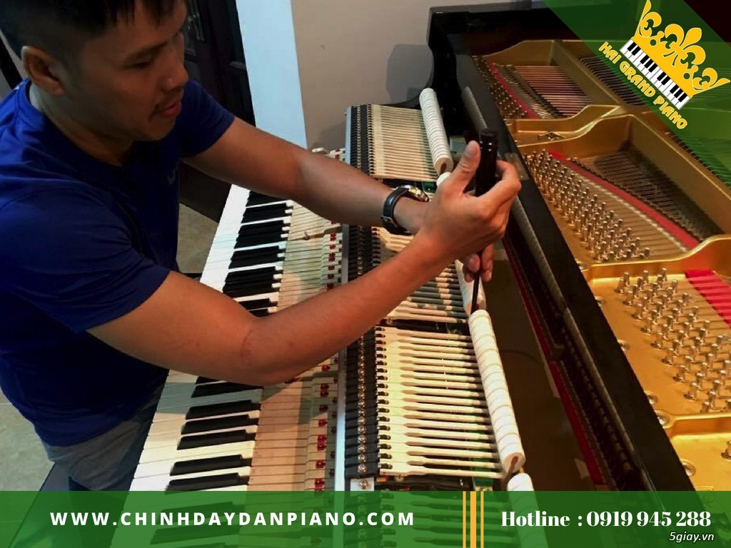 Chỉnh Dây Đàn Piano Cơ Chuyên Nghiệp Tp.HCM - 4