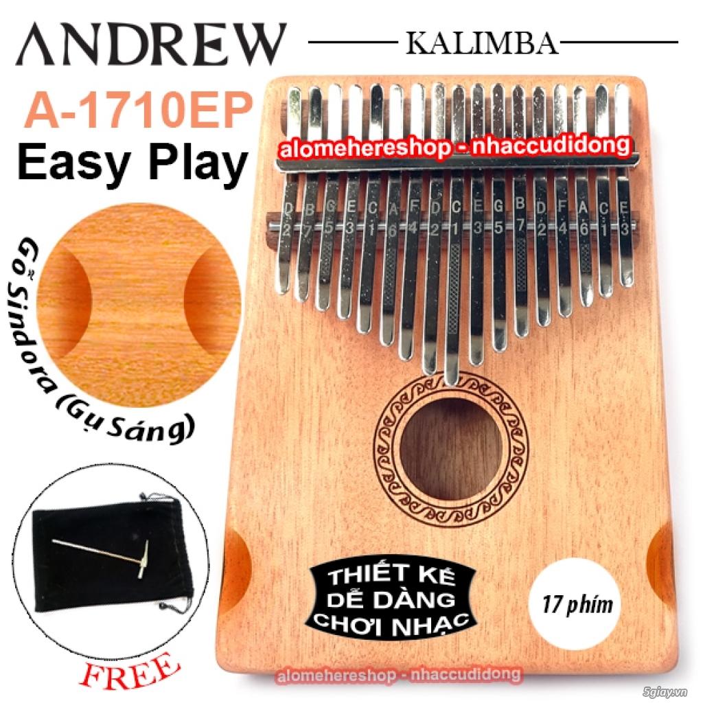 [Kalimba Shop] Chuyên các loại đàn Kalimba 10 15 17 phím, phụ kiện DIY - 7