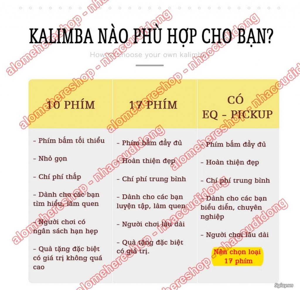[Kalimba Shop] Chuyên các loại đàn Kalimba 10 15 17 phím, phụ kiện DIY - 6