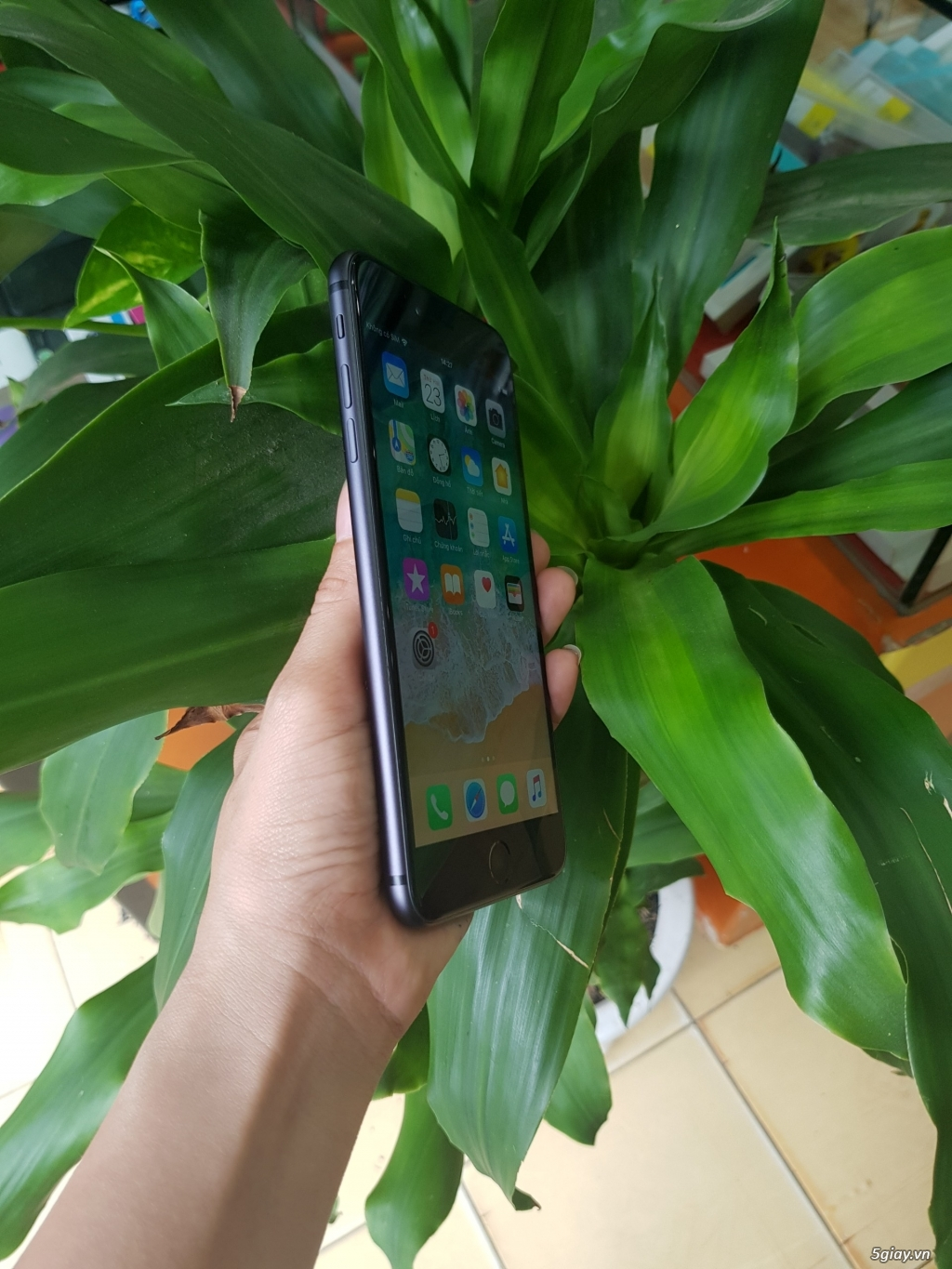 iphone 6 plus 16gb lên vỏ 8plud - 1