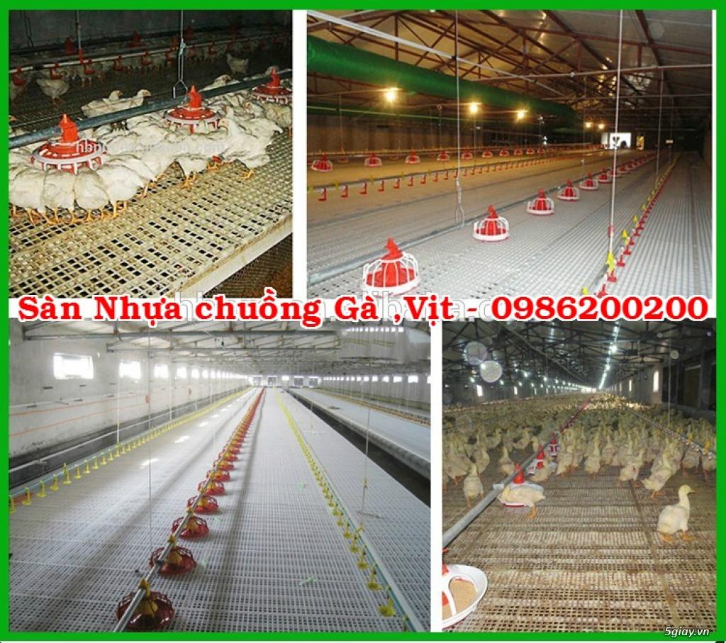 HCM-VT : Bán tấm nhựa lót sàn chuồng chó, mèo, heo, dê - 0986200200 - 26