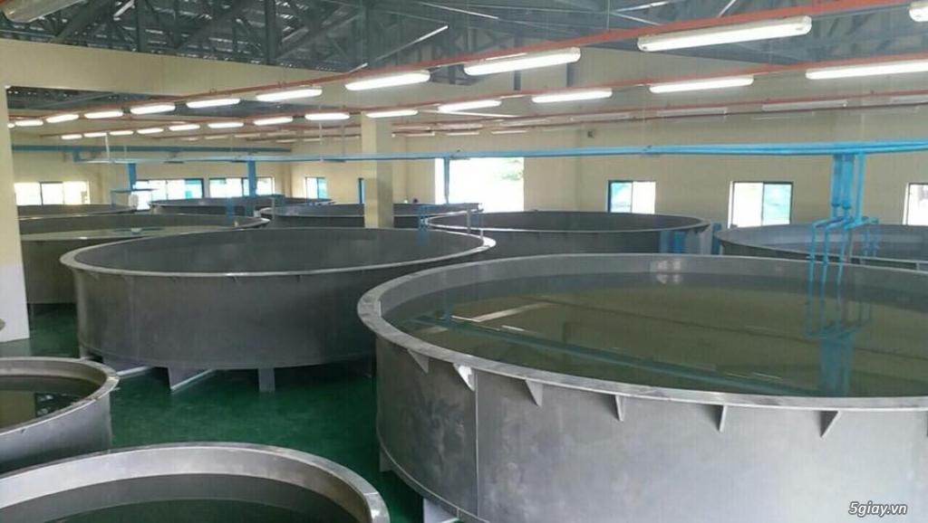 Bể cá cảnh bằng Acylic,PMMA,Polycacbonate,PVC siêu trong, - 15
