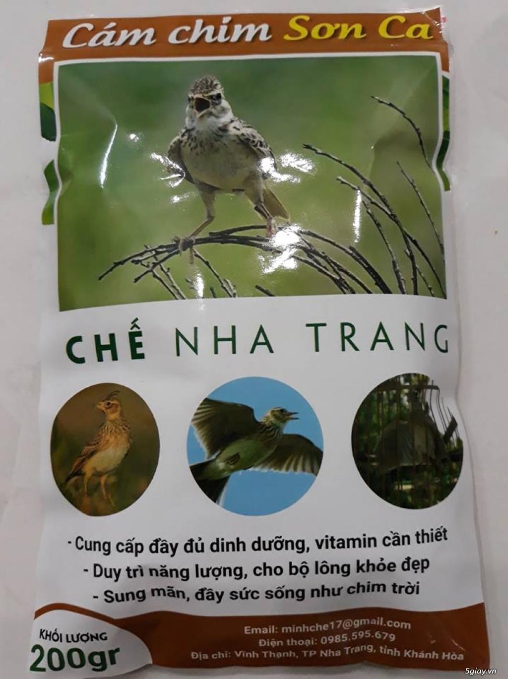 """Cám chim Sơn Ca """"CHẾ NHA TRANG""""  098.559.5679"""