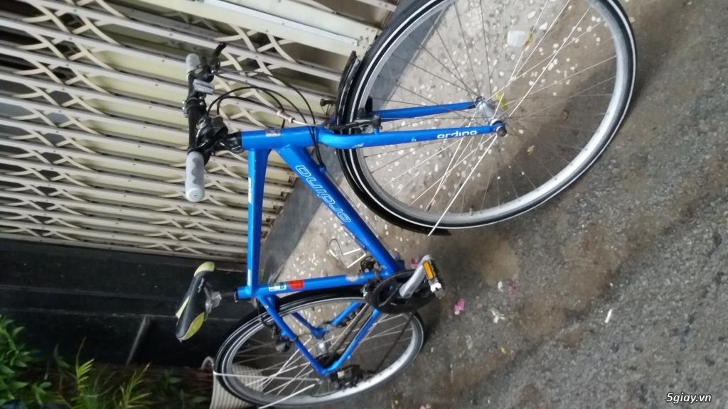 Xe đạp  ROAD cao cấp PROGRESSIVE - 28