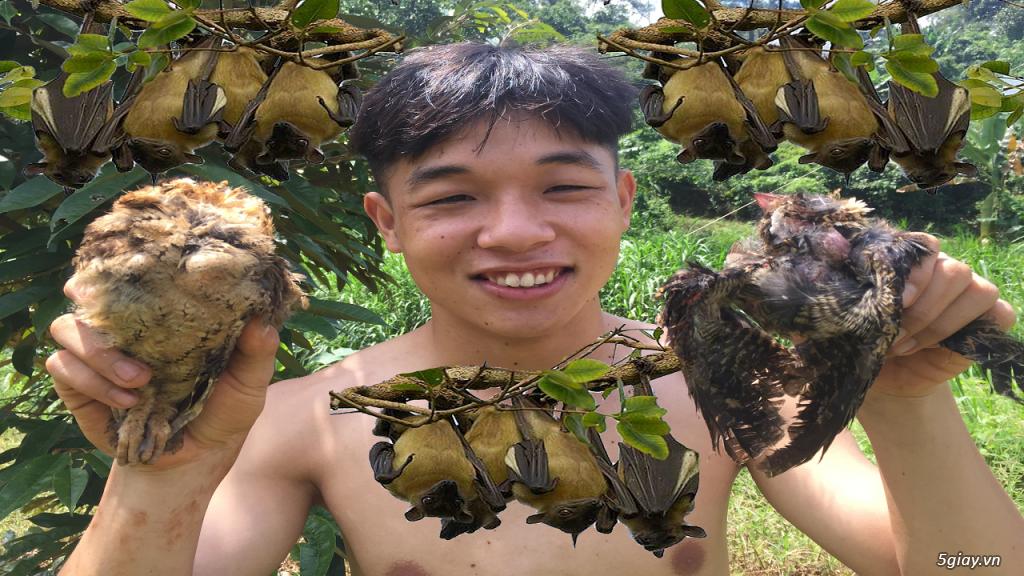 Thần Nông - giăng lưới tàng hình bẫy chim ưng không ngờ dính nguyên đà