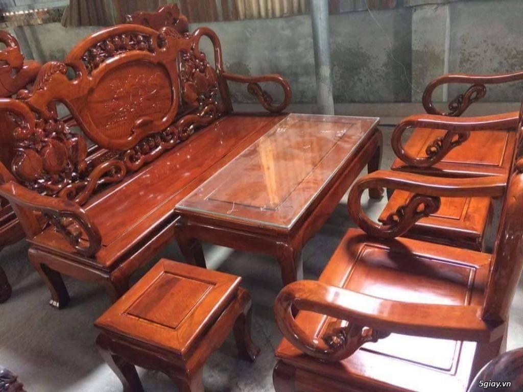 Bộ bàn ghế guột gỗ nhãn phun PU - 5