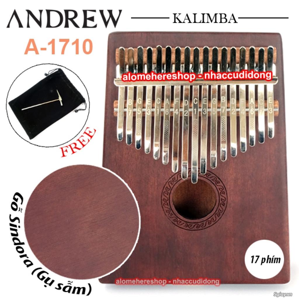 Nhaccudidong.com -Chuyên các loại harmonica, kèn, sáo, nhạc cụ nhỏ gọn - 3