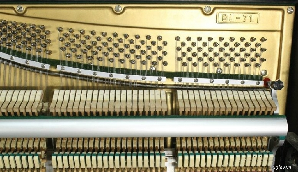 T.Lý Nhiều Đàn Organ, Piano Cơ/ Điện, Thùng Đời Mới Giá Rẻ 1/2, BH Lâu - 5