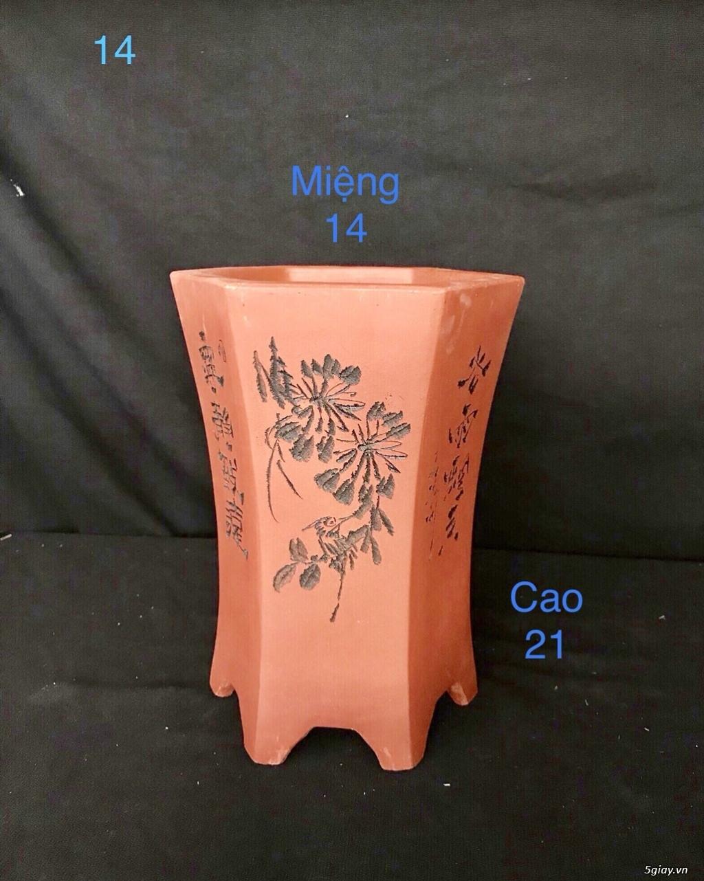 Chậu cây bonsai nhập khẩu, đẹp, có giá sỉ và lẻ cho a/e, 0962118575 - 11