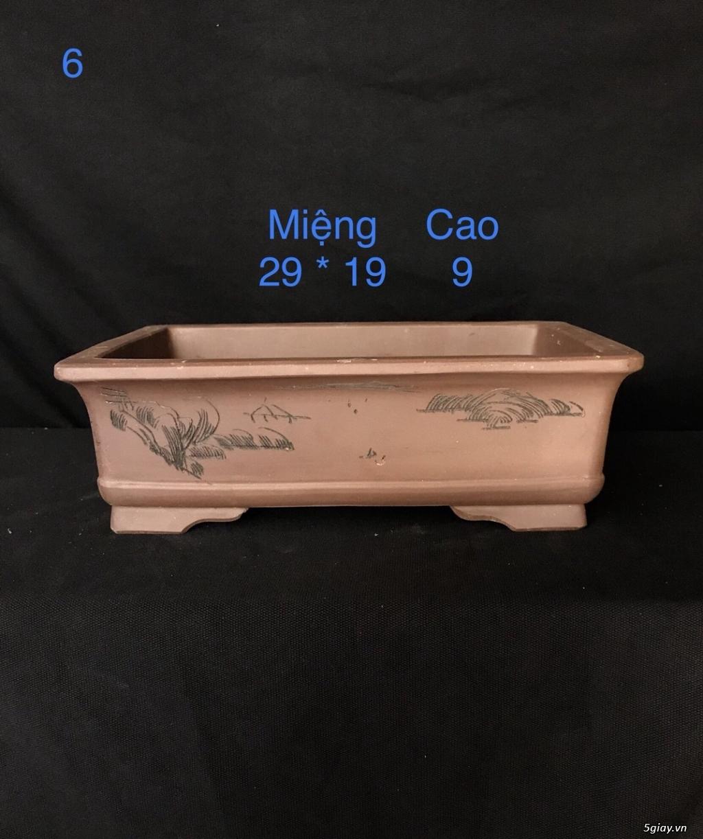 Chậu cây bonsai nhập khẩu, đẹp, có giá sỉ và lẻ cho a/e, 0962118575 - 4