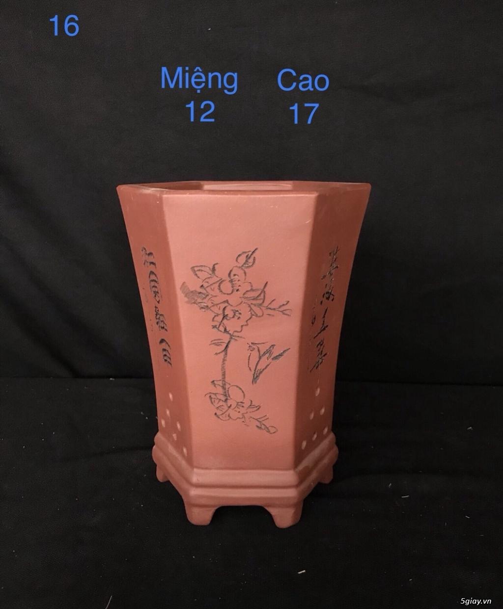 Chậu cây bonsai nhập khẩu, đẹp, có giá sỉ và lẻ cho a/e, 0962118575 - 13