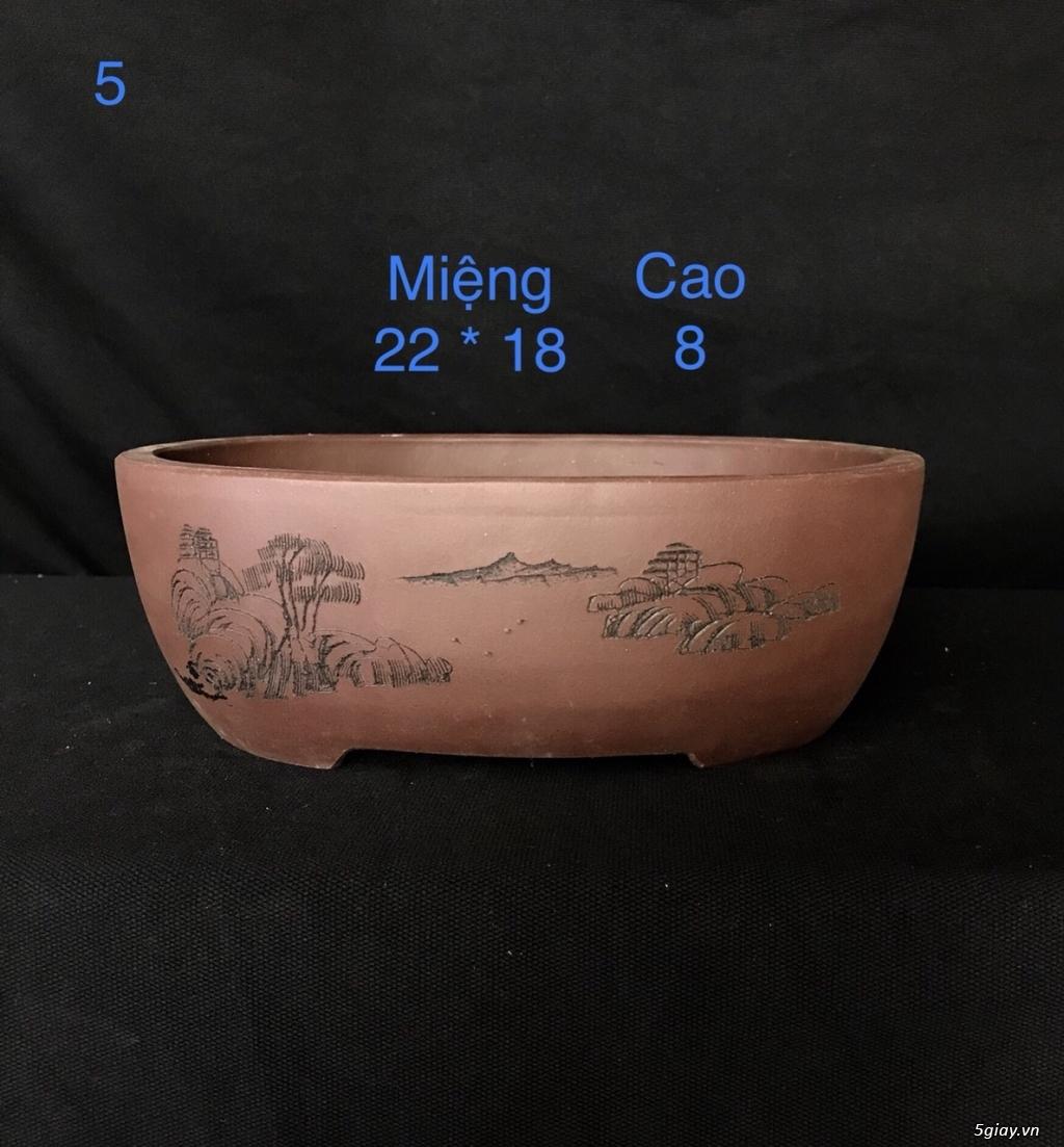 Chậu cây bonsai nhập khẩu, đẹp, có giá sỉ và lẻ cho a/e, 0962118575 - 2